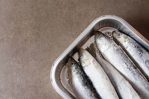 Frozen sardines. Cornish. For grill and BBG. Dark background.