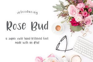 Rose Bud Hand-Lettered Font