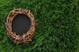 Easter background with nest in grass