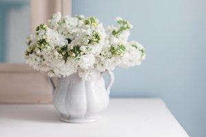 White Hyacinths on Dresser