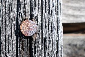 Rusted Nail and Weathered Wood