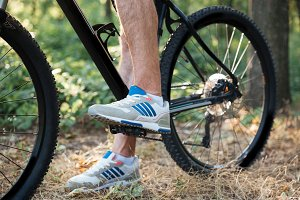 Cropped image of bicycle in forest