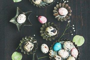 Quail eggs & dried wild flowers