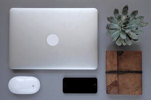 Desk flat lay with laptop and plant