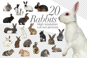 20 Rabbits - Cut-out Pictures