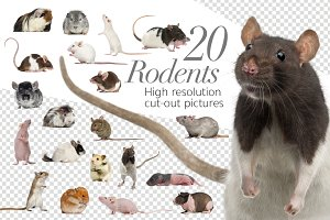 20 Rodents - Cut-out Pictures
