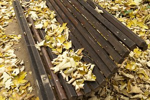 Bench in the Fall.jpg