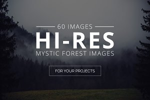 Mystic Forest Photo Pack - 60 Images