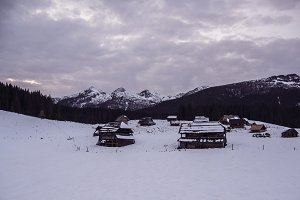 Cottages on Meadow in Winter Forest