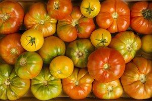 Many Tomatoes