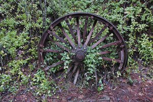 Old Rusted Metal Spoke Wheel