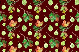 Gooseberry berry seamless pattern