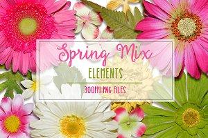 Spring Mix Elements
