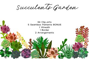 Succulents Bundle PNG + Patterns