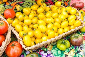 Basket of yellow tomatoes