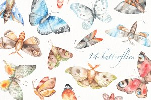 watercolor butteflies set