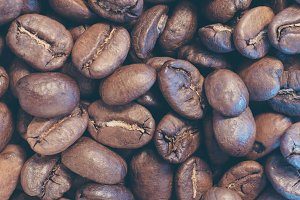 Light Roasted Coffee Beans in Group