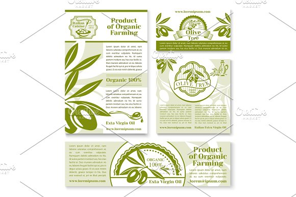Olive oil and fruit sketch business template set