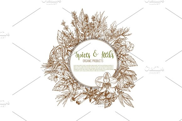 Spices, herbs and leaf vegetable seasoning poster in Graphics