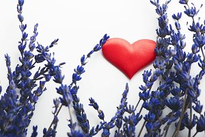 Red heart next to lavender flower on white background.
