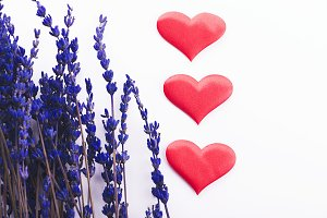 Three red hearts next to lavender flower on white background. Isolated.