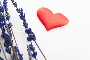 Red heart and lavender flower on white background. Isolated.