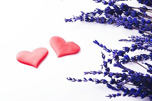 Two red hearts next to lavender flower on white background. Isolated.