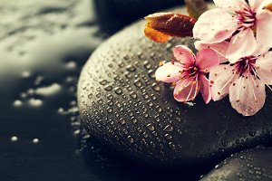 Spa Concept. Spa Hot Stones Flowers