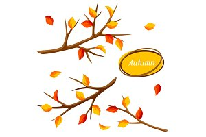 Autumn set with branches of tree and yellow leaves. Seasonal illustration