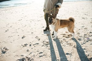 Cropped picture of young lady walks in beach with dog