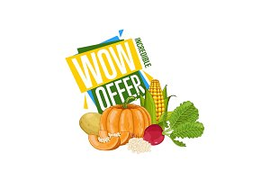 WOW offer discount poster with fresh vegetable