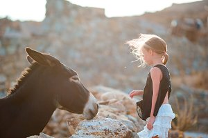 Little adorable girl with wild donkey on greek island outdoors