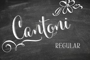 Cantoni Basic Hand Lettered Font