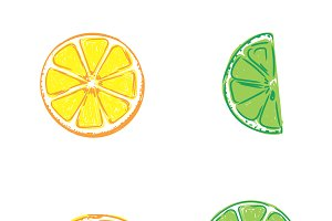 lemon and lime, sketch, vector