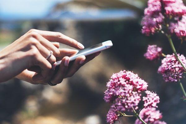 Technology Stock Photos: A_B_C - Smartphone in hands of the girl