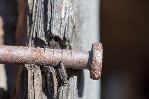 Old Rusty Nail in Barnwood