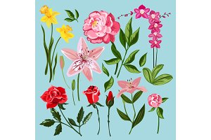 Vintage flowers vector illustration.