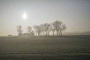 Fog on the land