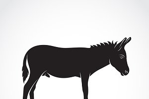 Vector of a donkey.