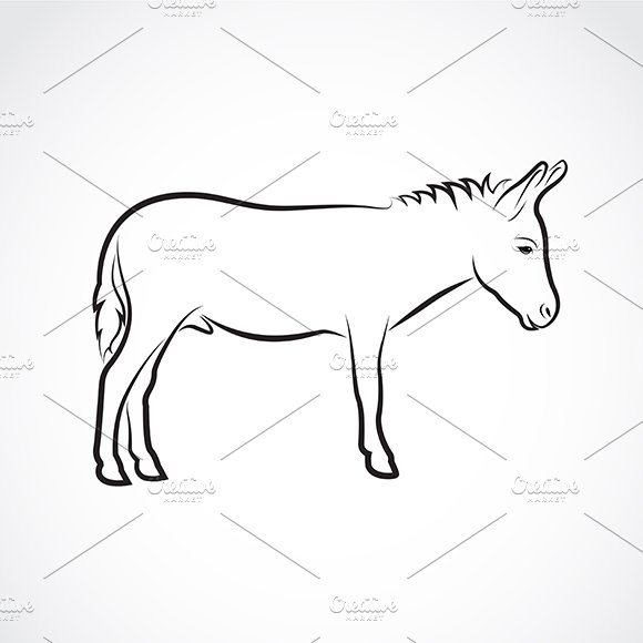 Vector Of A Donkey