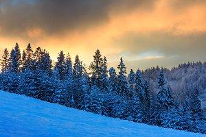 Winter sunset Carpathians.