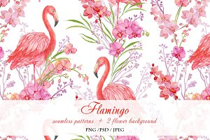 Flamingo seamless patterns watercolo