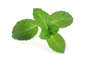 Fresh mint leaves closeup isolated on white background