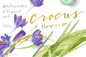 Happy Crocuses