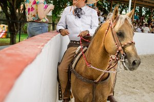 mexican cowboy on horse