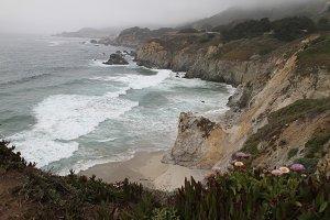 Ocean shore.