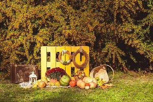 Thanksgiving autumn decorations