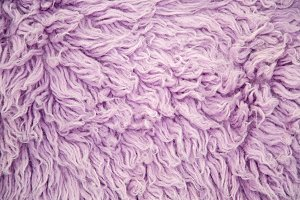 purple large long fur