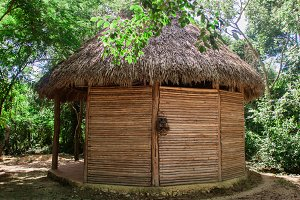thatched roof jungle bungalow