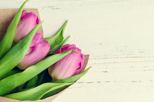 Tulips on white shabby chic background